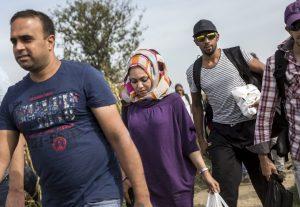 Illegális bevándorlás - Szerb-horvát határ