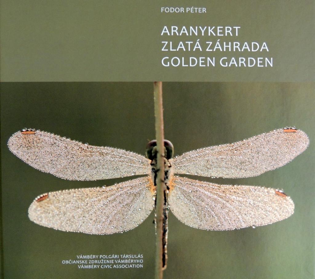 ARANYKERT